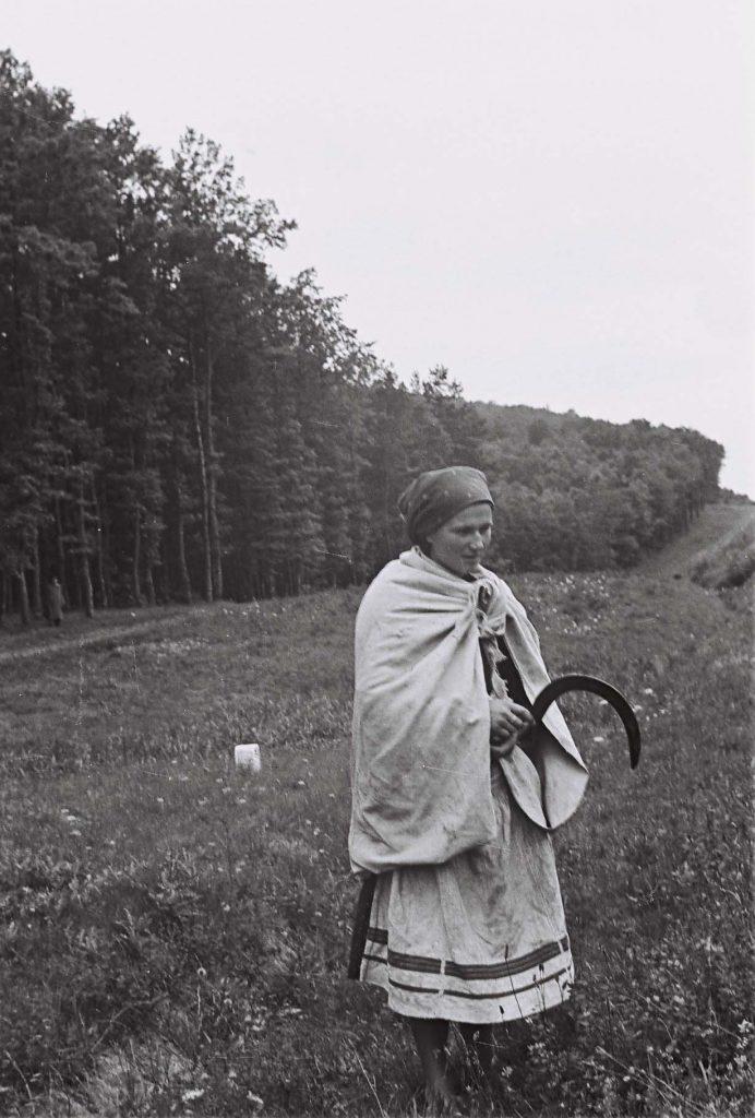 Nő sarlóval a kezében. (Arany Adalbert László zobor vidéki néprajzi fotói az 1940-es évekből. Lipcsey Gyula hagyatéka.)